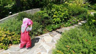 【おでかけ・子育てグッズ】ガーデンズで水遊び、からのメイちゃん(トトロ)のまねっこ遊び。と、ラストプール後はベビーパウダー!