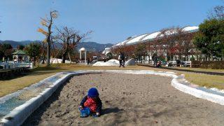 【公園・ケーキ屋記録】今期は来週まで!阪神競馬場公園と、VERSAのケーキ☆
