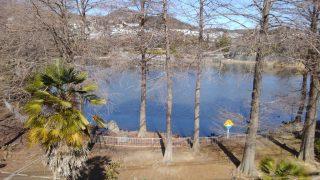 【おでかけ・子連れランチ】お散歩が楽しい大池公園♪と、ママ会にも最適な広東料理・菜香でランチ@甲陽園/西宮