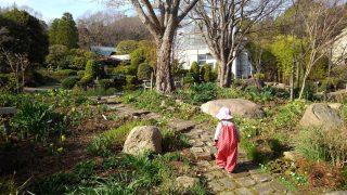 【おでかけ】春爛漫♪子連れピクニック、散歩に最適!桜は今週末が見頃?北山緑化植物園/西宮