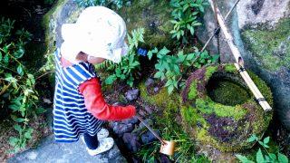 【秋のおでかけ】子どもと気軽に楽しめる、日本庭園と水琴窟☆紅葉の北山山荘@北山緑化植物園/西宮