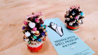 【おでかけ】貝殻で飾る松ぼっくりツリー作り♪子ども向けイベントが豊富な貝類館/西宮・西宮浜